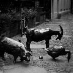 """Nickita """"folwark...."""" (2008-11-16 11:51:37) komentarzy: 5, ostatni: Wrocko. Pomnik wystawiony rzeźnym zwierzętom. Jako zdeklarowany mięsożerca dokładam swój osobisty im hołd - zwłaszcza wieprzkowi."""