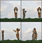 """h h a n a """"Odnaleziony przyjaciel"""" (2008-11-16 16:08:01) komentarzy: 62, ostatni: teatrzyk, fajny"""