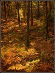 """kariola """"Obrazki ze Starej Baśni.... drugi"""" (2008-11-16 19:58:25) komentarzy: 19, ostatni: złote runo"""