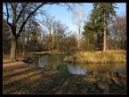 """Jaro_Ł_T """"Park Szczytnicki i ostatnie podrygi jesieni..."""" (2008-11-17 10:37:03) komentarzy: 6, ostatni: piekny park! Wrocław piękne miasto , a Ty dałeś bdb zdjęcie:)"""