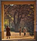"""Mopar """""""" (2008-11-18 18:15:19) komentarzy: 33, ostatni: Ciekawie zrobione, ładne kolory - podoba się"""