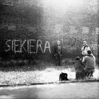 "Starfucker ""..."" (2008-11-19 15:26:04) komentarzy: 23, ostatni: Gniot. Za ""fotografem piękna""."