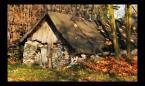 """popo007 """"chatka kotków"""" (2008-11-20 22:22:21) komentarzy: 9, ostatni: Ale ją pogięło,a fotka ok."""