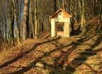 """damk """"Kapliczka"""" (2008-11-24 14:10:05) komentarzy: 31, ostatni: musiałem znowu tu zajrzeć, przepiękne zdjęcie, +++"""