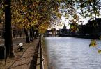 """naan400 """""""" (2008-12-02 00:12:31) komentarzy: 4, ostatni: Za drzewami skrył się też ciekawy dla fotografujących obiekt. A gdzie to?"""