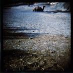 """kerorre """""""" (2008-12-06 13:15:47) komentarzy: 3, ostatni: nessie w suchym basenie"""