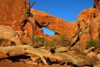 "sakahet ""Arches National Park, Utah, USA"" (2008-12-06 22:31:36) komentarzy: 18, ostatni: dobry kadr, piekne kolory"