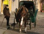 """Choszczman """"Koń by się uśmiał.."""" (2008-12-07 20:24:00) komentarzy: 27, ostatni: + za detale... Kantor i tabliczka z Piwną..."""