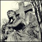 """Łukasz Pluta """"Stone Angel."""" (2008-12-17 21:31:24) komentarzy: 3, ostatni: Super lubię takie klimaty :)("""