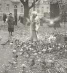 """Aneta Nieścior """""""" (2008-12-19 23:44:55) komentarzy: 6, ostatni: jak anioł"""