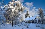 """jasawa """"A zima wygląda tak..."""" (2008-12-24 16:53:47) komentarzy: 3, ostatni: kurdę, fajne są te twoje zimowe...czarujesz tym śniegiem."""