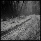 """iqa """""""" (2008-12-29 21:19:45) komentarzy: 4, ostatni: dobre... (a poza tym u mnie za oknem jest śnieg...)"""