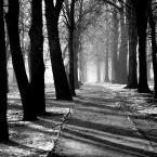 """Nickita """"IIIII"""" (2008-12-31 09:56:49) komentarzy: 12, ostatni: Wrażenie, że za chwilę wypłynie dusza..."""