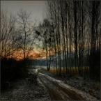 """Wołodytjowski """"O świcie"""" (2009-01-04 00:09:30) komentarzy: 7, ostatni: Malownicze"""