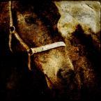 """Tarantella """"zapach ziemi"""" (2009-01-28 09:13:44) komentarzy: 3, ostatni: dzikie, inne, fajne"""