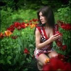 """LeszeK """""""" (2009-02-01 19:48:32) komentarzy: 93, ostatni: pięknie"""