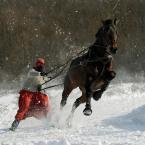 """Ronceval """"Ferie Czerwonego Kapturka"""" (2009-02-04 12:44:11) komentarzy: 44, ostatni: !!!"""