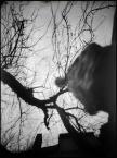 """Młodzian """"Pochylony nad camerą otworkową nr 5 autoportret"""" (2009-02-06 22:28:50) komentarzy: 7, ostatni: fajne !"""