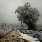 """Wołodytjowski """"Kolorowa zima"""" (2009-02-10 01:16:12) komentarzy: 17, ostatni: świetne"""