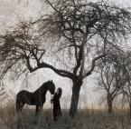 "Gosia Mąkosa ""nebel #3"" (2009-02-12 20:37:27) komentarzy: 24, ostatni: Bardzo mi sie podoba"