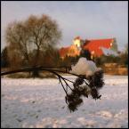 """Młodzian """"Klasztor w Wągrowcu"""" (2009-02-13 22:33:20) komentarzy: 10, ostatni: Tak trzymaj! Idziesz naprawdę w dobrym kierunku."""