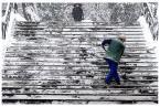 """zbigniew-en """"zimowe tango"""" (2009-02-20 10:15:38) komentarzy: 20, ostatni: od lat nie zmiennie;) pozdrawiam"""