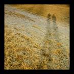 """eXdolceNegro """"cienie ..."""" (2009-02-21 11:55:26) komentarzy: 1, ostatni: +++"""