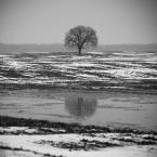 "klimat """" (2009-02-25 09:46:57) komentarzy: 32, ostatni: bdb"