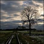 """Młodzian """"Długa droga"""" (2009-02-27 22:38:15) komentarzy: 12, ostatni: droga Żaneto :) w tym cały ich urok :) ja też uwielbiam samotność, oczywiście na zdjęciach :)"""