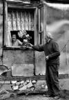 """lelo999 """"witaj Zosieńko..."""" (2009-03-01 10:03:43) komentarzy: 33, ostatni: :)"""