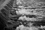 """marcin wuu """"Rytm III"""" (2009-03-06 17:12:17) komentarzy: 2, ostatni: Gratuluję widzenia rytmu nawet przy ruchu wody."""