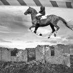 """kustulka """"...-..."""" (2009-03-06 19:31:40) komentarzy: 11, ostatni: Zwariowany jeździec"""