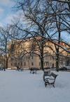 """podwiatr """"Plac Grunwaldzki"""" (2009-03-11 12:57:31) komentarzy: 1, ostatni: wychodzi na to że powinnam sie trzymać fotografii dziecięcej :)"""
