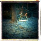 """ennio """"***"""" (2009-03-13 18:55:09) komentarzy: 17, ostatni: Jak zaczarowany ogród. Niezwykła seria."""