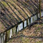 "kops ""kanał"" (2009-03-15 23:43:22) komentarzy: 4, ostatni: db®"