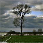 "Młodzian ""Samotnik nr 2"" (2009-03-25 19:56:37) komentarzy: 9, ostatni: bdb"