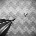 """tysjusz """"umbrella\'s groupie:."""" (2009-03-29 20:38:07) komentarzy: 4, ostatni: Myśl sobie co chcesz, ale jestem twoja fanką:)"""