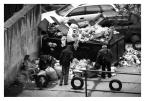 """Andrzej Trzos """"W poszukiwaniu..."""" (2009-04-01 18:01:04) komentarzy: 1, ostatni: Nachalny tytuł... zdjęcie widać, że robione z przyczajki, szkoda"""