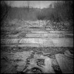 """Łukasz Pluta """"Droga Zapomnienia."""" (2009-04-02 20:56:38) komentarzy: 10, ostatni: 2.50"""