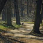 """mysliciel """"Sweet road to somewhere else"""" (2009-04-06 22:09:51) komentarzy: 3, ostatni: Bardzo ładne zdjęcie."""