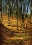 """koszmar69 """"Wielkanoc w lesie #1"""" (2009-04-13 01:03:45) komentarzy: 7, ostatni: Dobry kontrast i idealny kadr"""