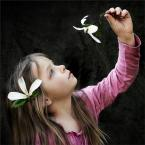 """anna lewiak """""""" (2009-04-16 20:24:24) komentarzy: 18, ostatni: Piękne nasz te fotki... zazdroszczę wrażliwości..."""