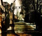 """puzii """""""" (2009-04-23 23:00:58) komentarzy: 32, ostatni: Wiem, że to miejsce mroczne. Zdjęcie to podkreśla."""