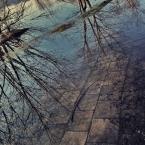 """-sever- """"wiosenne klimaty"""" (2009-04-26 00:20:29) komentarzy: 1, ostatni: a to, to nawet i fajne dośc jest... :) Pozdr, slw."""