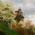"""asiasido """"wiosna w Lublinie"""" (2009-04-30 15:53:46) komentarzy: 4, ostatni: +++"""
