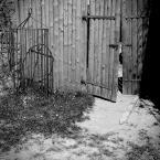 """aptur """"escape"""" (2009-05-02 19:36:38) komentarzy: 1, ostatni: zaciekawia"""