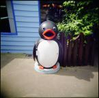 """Lleika """""""" (2009-05-21 16:50:56) komentarzy: 9, ostatni: Krasnal ogrodowy to przeżytek, pora na wkroczenie pingwinów :D"""