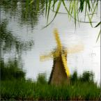 """Anavera """"wiatrak"""" (2009-06-01 19:21:18) komentarzy: 21, ostatni: cudnie"""