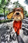 """Aruan.pl """"Psie życie"""" (2009-06-09 17:13:13) komentarzy: 4, ostatni: Koszykarz się znalazł ;)"""