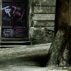 """Nickita """"pink no death...."""" (2009-06-14 03:10:21) komentarzy: 2, ostatni: podoba mi sie kadr :)...taki prawdziwy...TTs"""